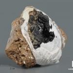 Вивианит в раковине, 6,6х6,4х2,8 см