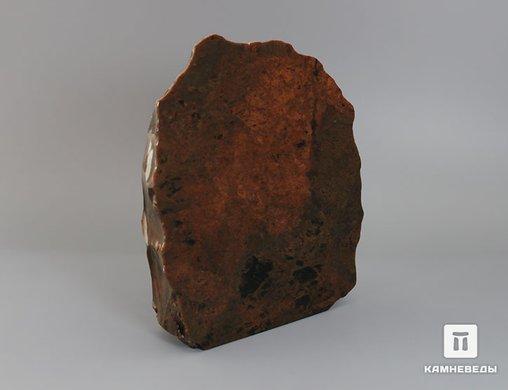 Обсидиан коричневый, полированный срез 14,2х12,8х3,9 см