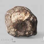 Метеорит NWA 869, 2х1,7х1,5 см (7-9 г)