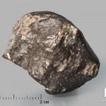 Метеорит NWA 869, 3,7х3,3х2,7 см (43 г)